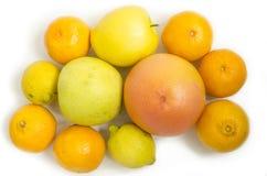 Citrusfrukter med vit bakgrund Arkivbild