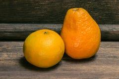 Citrusfrukter på mörk träbakgrund Royaltyfria Bilder