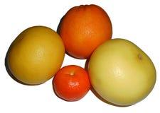Citrusfrukter som isoleras på vit Royaltyfri Fotografi