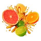 Citrusfruktfärgstänk royaltyfri illustrationer