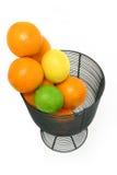 citrusfruktlivstid över still white Arkivfoto