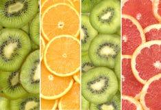 citrusfruktskivor Arkivfoton
