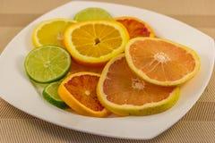 Citrusfruktskivor på plattan Arkivfoto