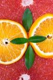 Citrusfruktstrukturen läggas ut beautifully Arkivfoto