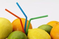 citrusfruktsugrör Arkivfoto