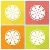 Citrusfruktsymboler Fotografering för Bildbyråer