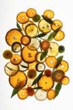 Citrusskivor på en vit bakgrund Arkivbilder