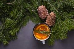 Citrust kryddigt te, filialfilialer och cederträkottar på en mörk bakgrund - övervintra bakgrund och att värme drinken för värme  arkivfoton