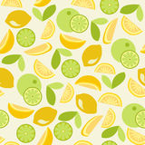 Citrust sömlöst - illustration Arkivfoton