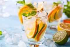 Citrust vatten med mintkaramellen royaltyfri fotografi