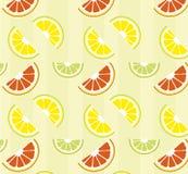 Citrusvrucht vector illustratie