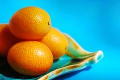 Citrusvrucht Royalty-vrije Stock Foto