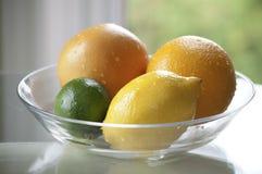 Citrusvrucht in een Kom Stock Afbeelding