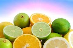 Citrusvrucht en zon Royalty-vrije Stock Afbeeldingen