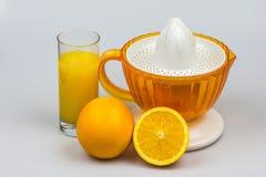 Citrusvrucht juicer met sinaasappelen en citroen op een witte achtergrond worden geïsoleerd die Royalty-vrije Stock Foto's