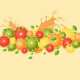 Citrusvrucht met plonsen van sap en muntbladeren Stock Foto