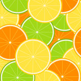 Citrusvrucht Naadloze Tecture Stock Afbeelding