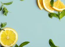 Citrusvrucht op retro muntachtergrond Royalty-vrije Stock Fotografie