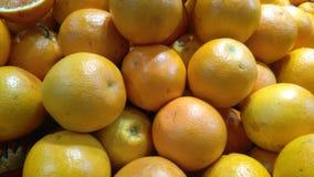 Citrusvrucht op vertoning Royalty-vrije Stock Foto's