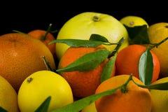 Citrusvrucht op zwarte royalty-vrije stock foto's
