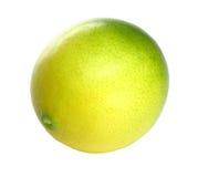 Citrusvrucht over wit Royalty-vrije Stock Foto
