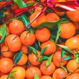 citrusvrucht Verse organische Mandarijnen in een doos op vertoning bij een landbouwer Royalty-vrije Stock Afbeeldingen