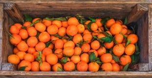 citrusvrucht Verse sinaasappelen in een doos op vertoning bij een landbouwersmarkt of Stock Foto's