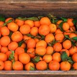 citrusvrucht Verse sinaasappelen in een doos op vertoning bij een landbouwersmarkt of Stock Afbeelding