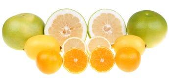 Citrusvruchten Royalty-vrije Stock Afbeelding