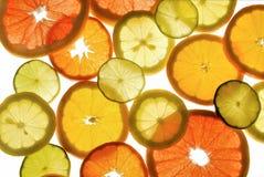 Citrusvruchten Stock Fotografie