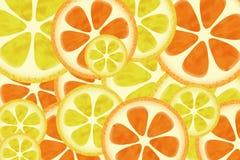 Citrusvruchten achtergrondpatroon Stock Afbeeldingen