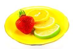 Citrusvruchten en Aardbei Royalty-vrije Stock Foto's