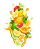 Citrusvruchten Juice Drops Colorful Composition Royalty-vrije Stock Foto