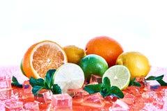 Citrusvruchten: kalk, sinaasappel, citroen met munt en ijsblokjes op een koraalachtergrond Verse de Zomervruchten stock afbeeldingen