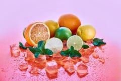 Citrusvruchten: kalk, sinaasappel, citroen met munt en ijsblokjes op een koraalachtergrond Verse de Zomervruchten stock fotografie