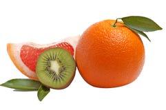 Citrusvruchten op een wit. Royalty-vrije Stock Foto's