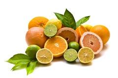 Citrusvruchten op witte achtergrond Stock Fotografie