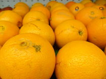 Citrusvruchten in orde Stock Afbeeldingen