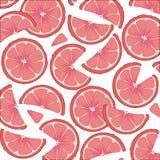 Citrusvruchten, sappige grapefruitplakken Het element van het ontwerp Stock Afbeeldingen