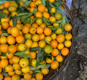 Citrusvruchten voor verkoop op straat in Hoi An, Vietnam Royalty-vrije Stock Afbeeldingen