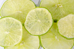 Citrusvruchtenkalk op witte achtergrond Royalty-vrije Stock Fotografie