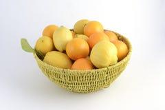 Citrusvruchtenmand met sinaasappelen en citroenen Royalty-vrije Stock Fotografie