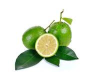 Citrusvruchtenmedica Linn op witte achtergrond Stock Foto's