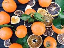 Citrusvruchtenmengeling royalty-vrije stock afbeelding