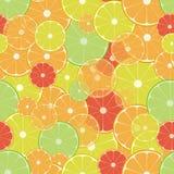 Citrusvruchtenpatroon Stock Afbeelding