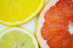 Citrusvruchtenplakken Royalty-vrije Stock Afbeelding