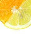 Citrusvruchtenplakken Stock Foto