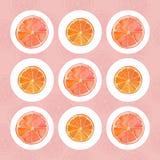 Citrusvruchtenplakken Stock Afbeelding
