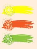 Citrusvruchtenplakken Royalty-vrije Stock Fotografie