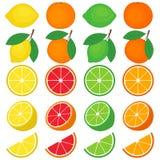 Citrusvruchtenreeks Royalty-vrije Stock Afbeelding
